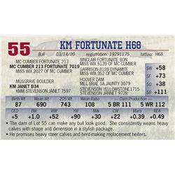 KM FORTUNATE H68