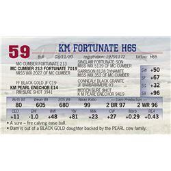 KM FORTUNATE H65