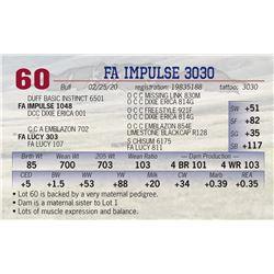 FA IMPULSE 3030