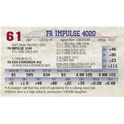 FA IMPULSE 4020