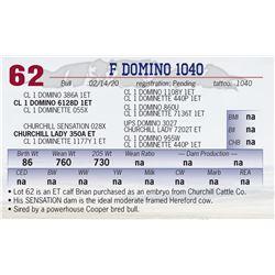 F DOMINO 1040