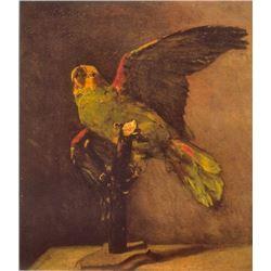 Van Gogh - Parrot