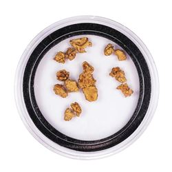 Lot of Gold Nuggets 3.19 Grams Total Weight