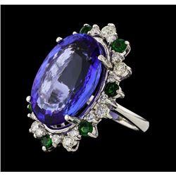 20.78 ctw Tanzanite and Diamond Ring - 14KT White Gold
