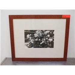 Framed Black & White Photographic Print - Blossoms
