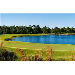 South Carolina Golf Package for 4