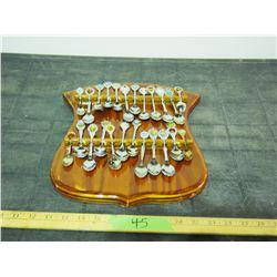 Spoon Rack with Spoons