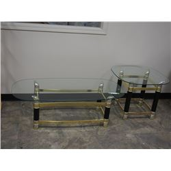 "2 Tables with Glass Tops 25T by 48"" L"
