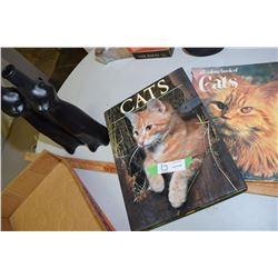 Cat Books and Jars/Bottles