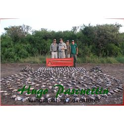 Argentina Bird Hunts