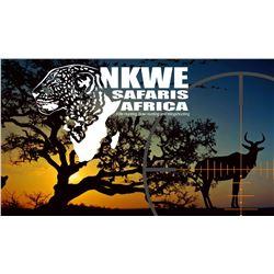 NKWE Safaris