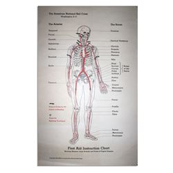 American Red Cross First Aid Instruction Chart Poster