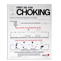 CPR. First Aid for Choking Vintage Red Cross Poster