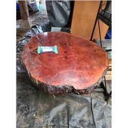 Burl Coffee Table Cat A