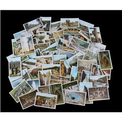 100 Yellowstone National Park Post Cards by Haynes