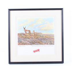 Great Falls Select Antelope Framed Print