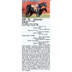 Kings Gallant Knight - 08 AQHA Black Gelding