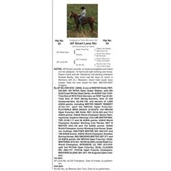 AP Smart Lena Nic - 2016 Sorrel Mare (5772554)