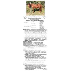 Docs Sweet N Low Oak - 2001 Sorrel Mare (4240650)