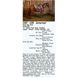 Kros Big Man - 11 AQHA Red Roan Gelding