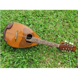 Bowl-Back Mandolin, Missing Strings, Some Corrosion Around Metal Parts