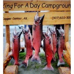 Alaskan Salmon Fishing Trip