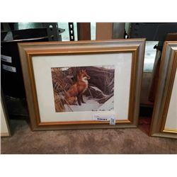 Framed unsigned Robert Bateman fox print