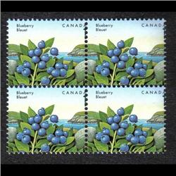 #1349var XF-NH BLOCK 4 *MISSING ONE VAR