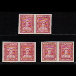 NEWFOUNDLAND #249P XF IMPERF PAIR ON 3 DIFF SHADE PAPER