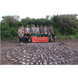 4 day - Cordoba Argentina Unlimited Dove Hunt for 2 hunters