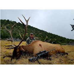 5 day - New Mexico Elk and Black Bear Combo Hunt for 2 hunters - Muzzleloader or Rifle