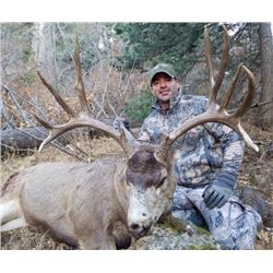5 day - New Mexico Mule Deer Rifle Hunt for 2 Hunters