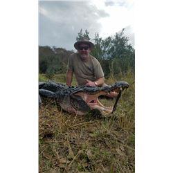 2 Day - Florida Alligator Hunt for 1 Hunter and 1 Non-Hunter