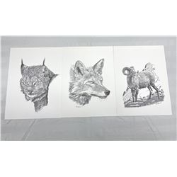 Hap Wilson Animal Prints