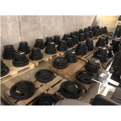 WEIGHT PLATES NOT INCLUDED UNLESS SPECIFIED * SEE LOTS 92 & 93