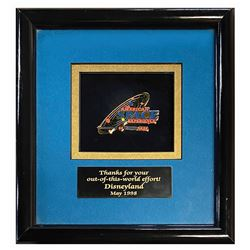 American Space Experience Project Team Pin.
