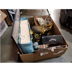 BOX OF COLLECTABLES, SILVER PLATE TRAYS, GOLF PUTT TRAINER, HARMONICA AND CAMERA LENS