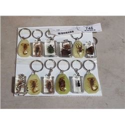 12 ENCASED INSECT KEYCHAINS