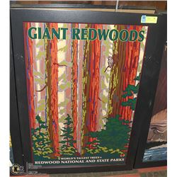 GIANT REDWOODS NATIONAL AND STATE PARKS