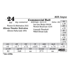 Commercial Bull