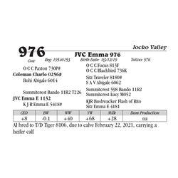 JVC Emma 976