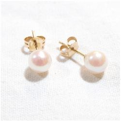 Lady's 14K Yellow Gold Pearl Stud Earrings. Total weight of .76 grams.
