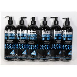 CASE OF 6 (500ML,EA) BLUEBERRY BURST PROFESSIONAL