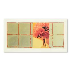 """Liz Rider, """"Aperture"""" Original Mixed Media, Hand Signed with Letter of Authentic"""