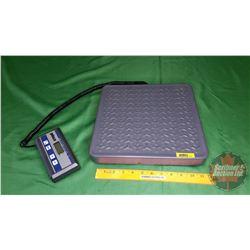 Scale: Pelouze Model 4010 (150lb Capacity)