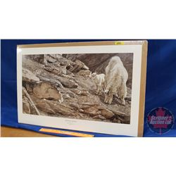 """Limited Edition Print """"Athabasca Spring"""" by Darren Haley (1779/5000) 1997 Ducks Unlimited (18"""" x 28"""""""