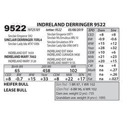 INDRELAND DERRINGER 9522