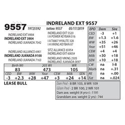 INDRELAND EXT 9557