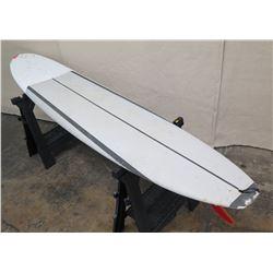 10' Surftech SoftTops Surfboard