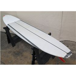 10' Surftech SoftTops Surfboard